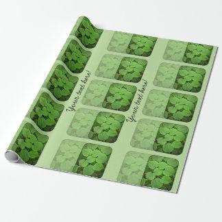 Folhas da limeira papel de embrulho