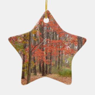 folhas da queda ornamento de cerâmica estrela