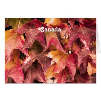 Folhas de bordo cartao