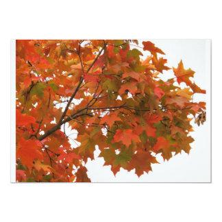 Folhas de bordo coloridas do outono convite 12.7 x 17.78cm