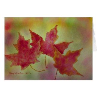 Folhas de bordo do outono cartão de nota