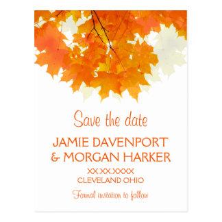 Folhas de bordo do outono que Wedding economias a Cartão Postal