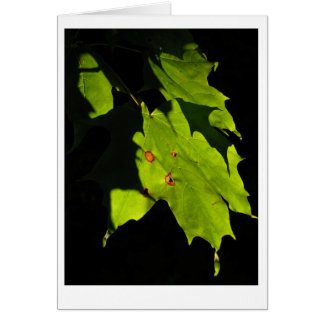 Folhas de bordo no ajuste sun. cartão de nota