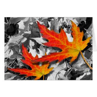 Folhas de bordo vermelhas cartão comemorativo