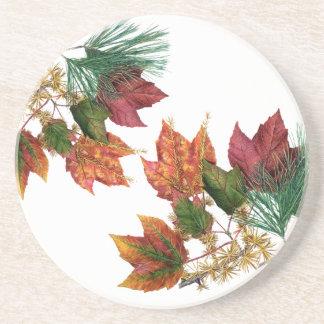 Folhas de outono e porta copos da bebida do