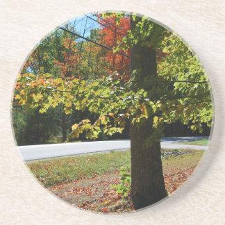 Folhas de outono em Maine Porta-copos De Arenito