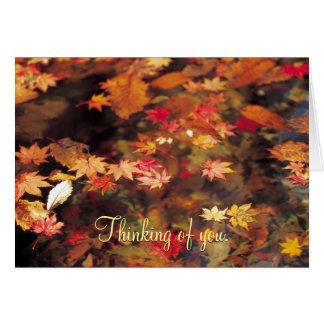 Folhas de outono no cartão dos pêsames da água