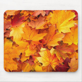 folhas do autum da queda do mousepad