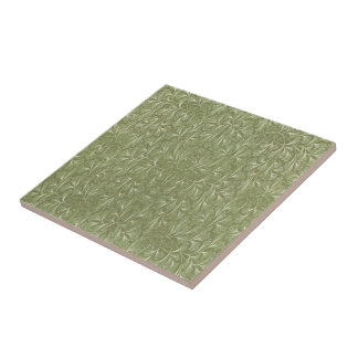 Folhas do biloba da nogueira-do-Japão no verde