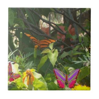Folhas e azulejo das borboletas