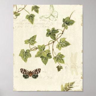 Folhas e uma borboleta pôster