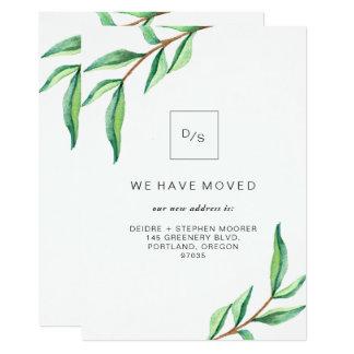 Folhas minimalistas moventes do verde do anúncio |