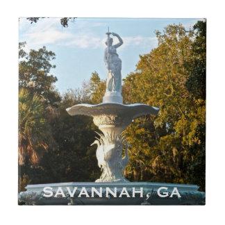Fonte do parque de Geórgia | Forsyth do savana