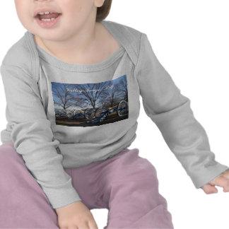 Forja do vale camisa da longo-luva do bebê do PA Tshirt