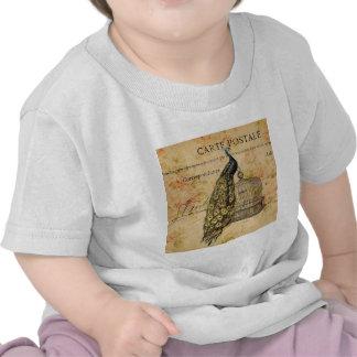 forma floral do pavão feminino de Paris do vintage T-shirts