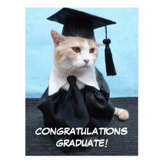 Formando dos parabéns! cartão postal