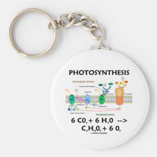 Fórmula da fotossíntese (produto químico) chaveiros