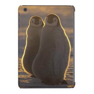 Forsteri dos pinguins, do Aptenodytes de Capa Para iPad Mini Retina