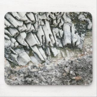 Fóssil do oceano mousepad