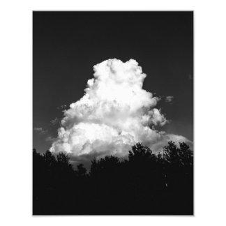 """Foto A bola de algodão a mais grande do mundo (14"""" x"""