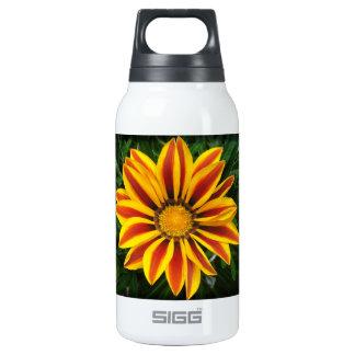 Foto alaranjada bonita da flor de Sun Garrafa De Água Térmica