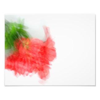 Foto Alstroemeria vermelho Bush no abstrato