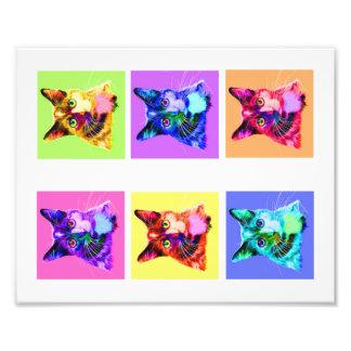 "Foto arco-íris do impressão 8x10""/retrato branco"