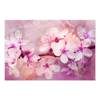 Foto Arte da aguarela da flor de cerejeira