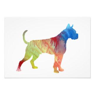 Foto Arte do cão do pugilista