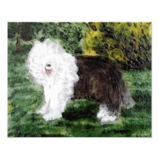 Foto Arte inglesa velha do Sheepdog