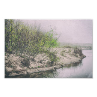 Foto Árvores o Lago Michigan do primavera das dunas de
