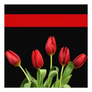 Foto As tulipas vermelhas escolhem a cor de acento