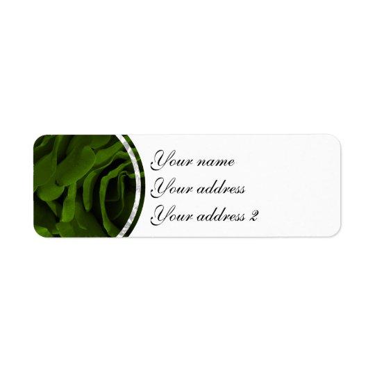 Foto aveludado da flor dos rosas da verde azeitona etiqueta endereço de retorno