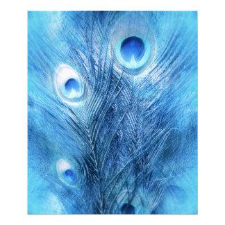 Foto Azul de pavão