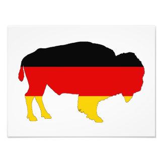 Foto Bandeira alemão - bisonte