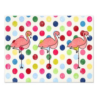 Foto Bolinhas coloridas dos flamingos Funky bonitos