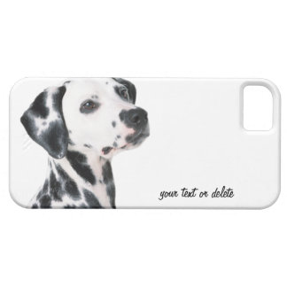 Foto bonita do cão Dalmatian, presente Capas Para iPhone 5