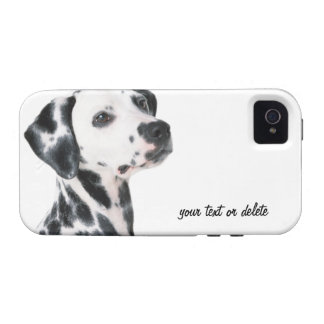 Foto bonita do cão Dalmatian, presente Capa Para iPhone 4/4S