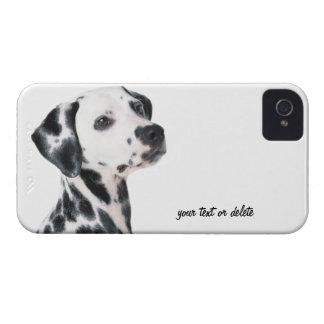 Foto bonita do cão Dalmatian, presente Capinhas iPhone 4