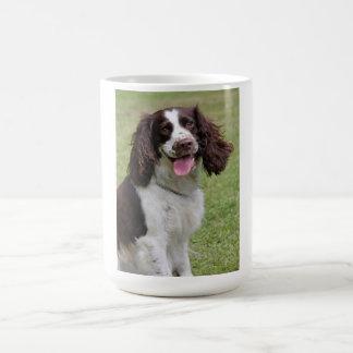Foto bonita do cão do Spaniel de Springer inglês, Caneca De Café