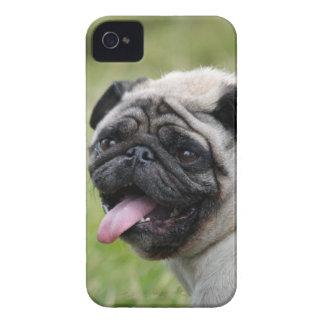 Foto bonito da caixa corajosa da amora-preta do capa para iPhone 4 Case-Mate