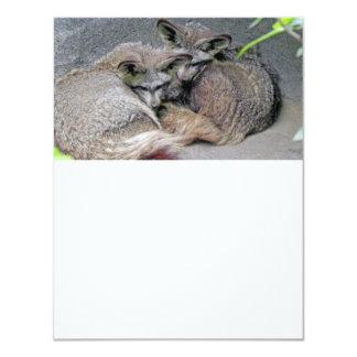 Foto bonito do sono do casal do Fox Convites Personalizados