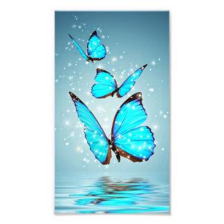 Foto borboleta azul brilhante bonita