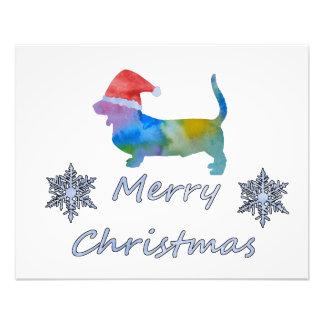 Foto Cão de Basset do Natal