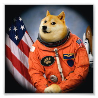 Foto cão do astronauta - doge - shibe - memes do doge