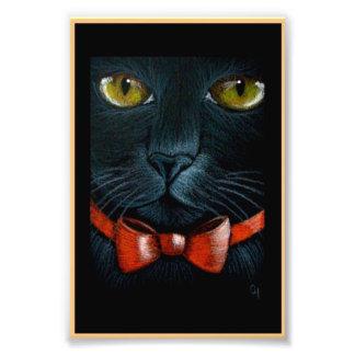 Foto CAT PRETO do DIA DAS BRUXAS com IMPRESSÃO