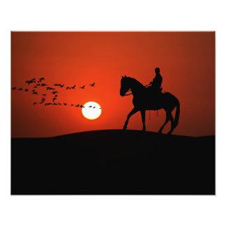 Foto Cavalo e cavaleiro da silhueta