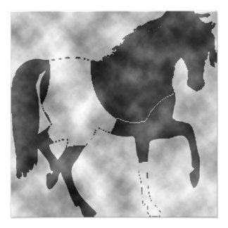 Foto cavalo preto