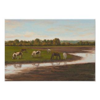 Foto Cavalos ingleses do campo na paisagem do pasto