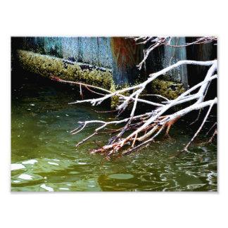 Foto Coisas do rio